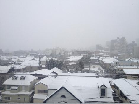 140208a snowy day
